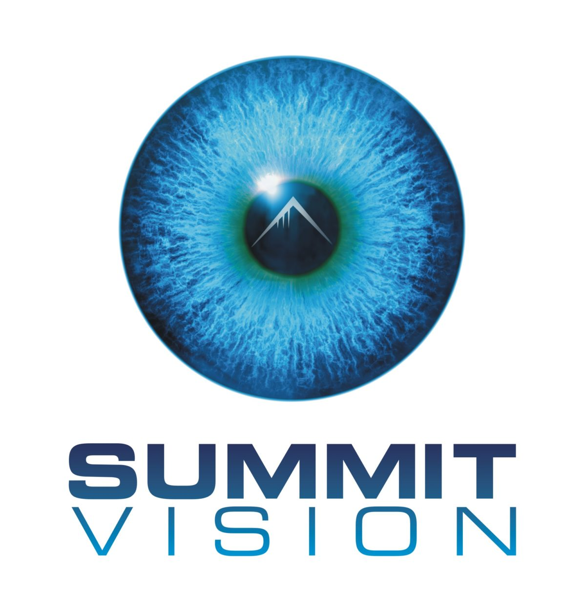 Introducing Summit Vision: IoT
